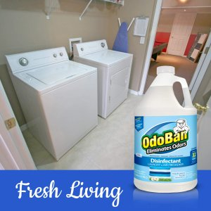 OdoBan Fresh Linen Concentrate